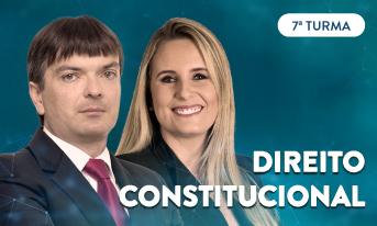 pos-graduacao-direito-constitucional-flavia-bahia-roberio-nunes